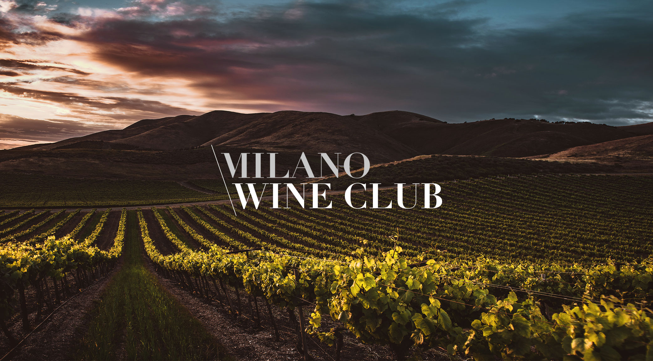 Milano Wine Club
